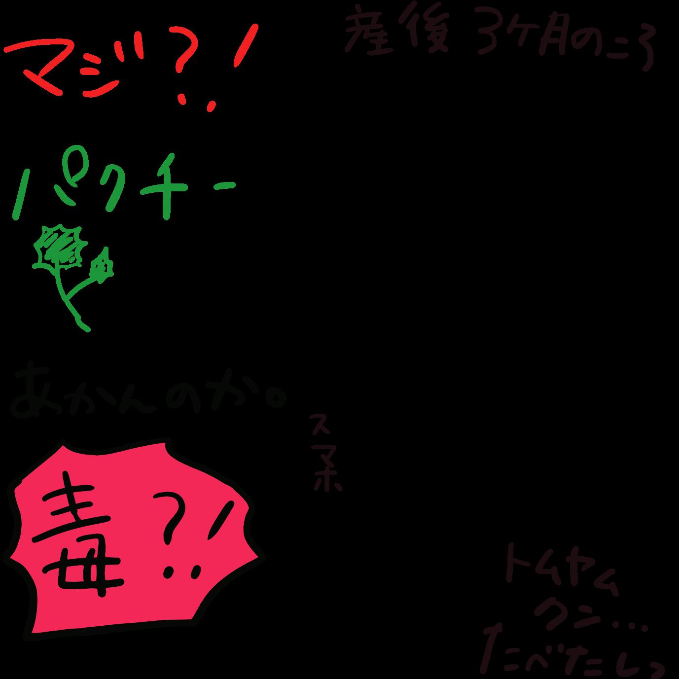 【カフェインNG?】著者の母乳子育て体験談【カレーNG?】