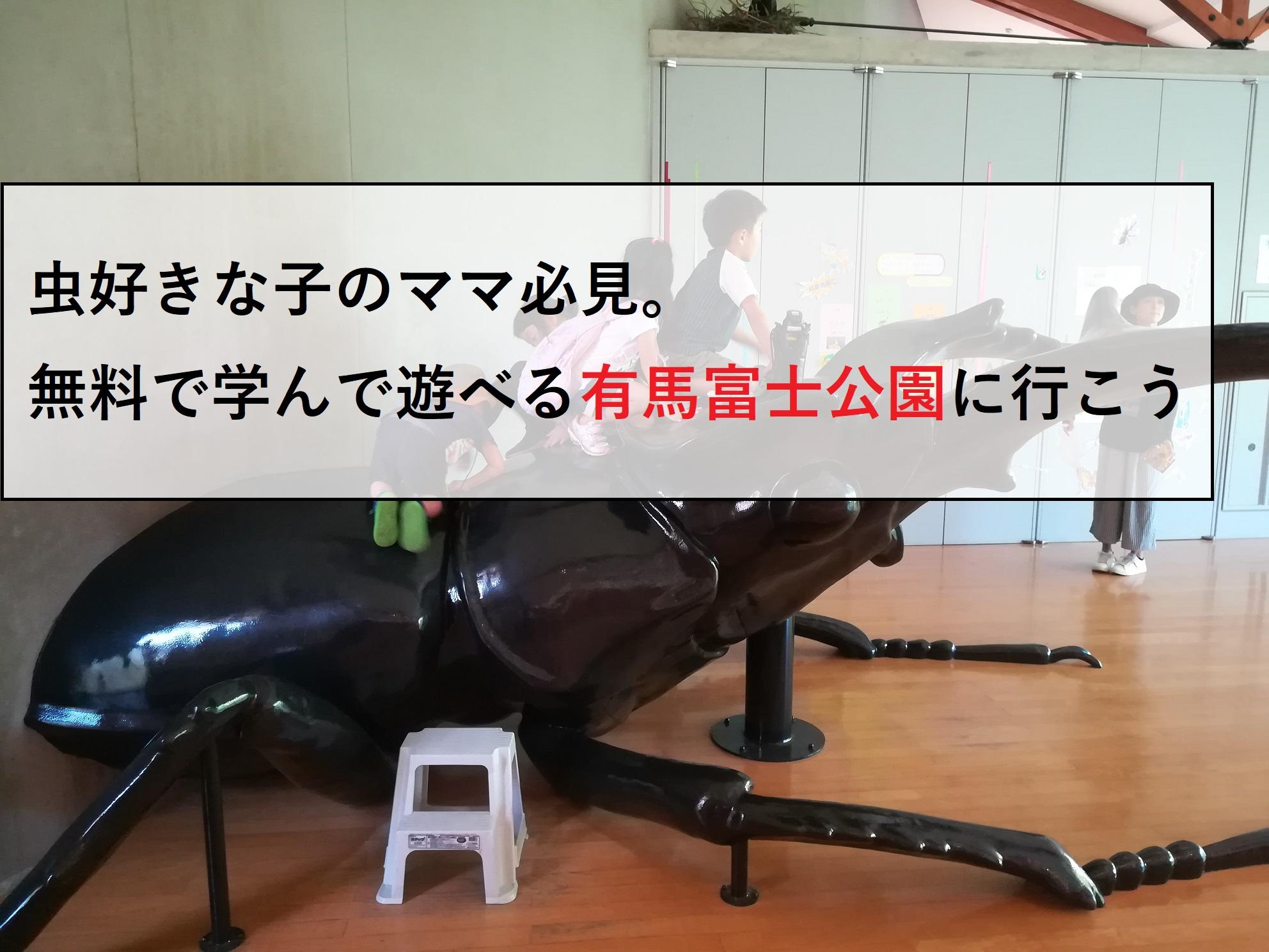 【三田】虫好きになっちゃう?幼児から楽しめる有馬富士公園で遊ぼう!
