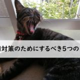 猫 粗相 対策