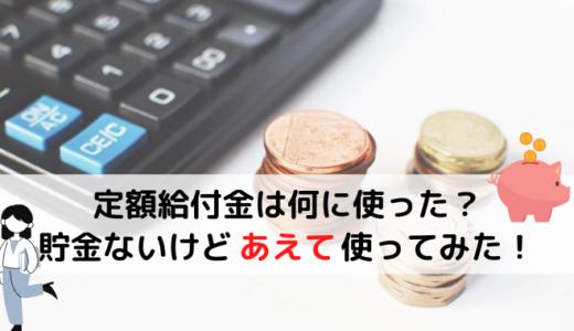 定額給付金は何に使うべき?低収入の我が家は貯金せずにあえて使ってみようと思う。